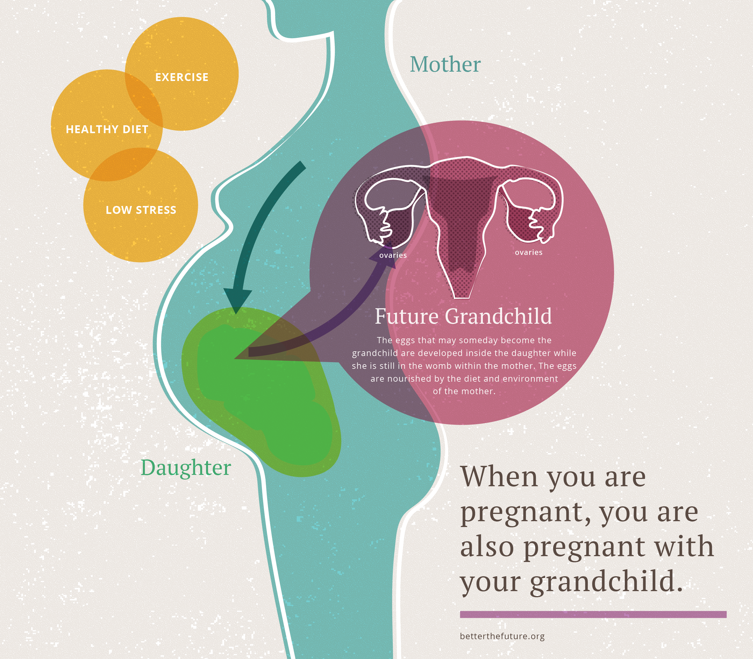 When you are pregnant you are pregnant with your grandshild