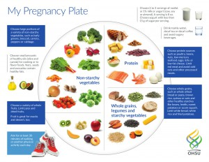 1Pregnancy Plate Eng updated 2015